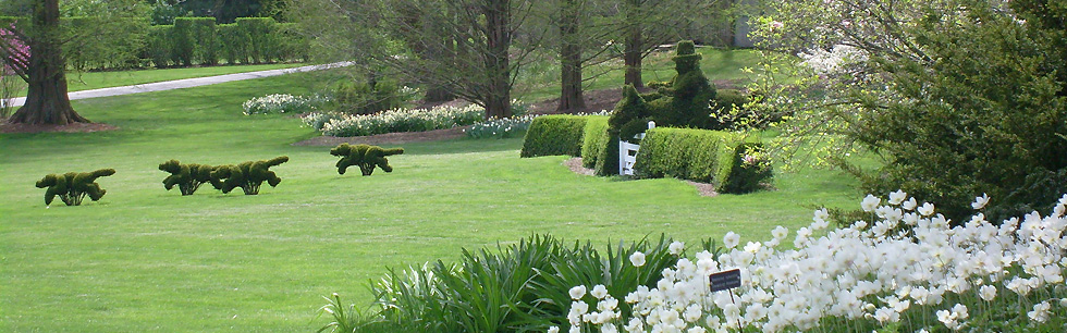 My favorite topiary of the month collection. June 2019 Topiary of the Month is the Ladew Topiary Gardens.