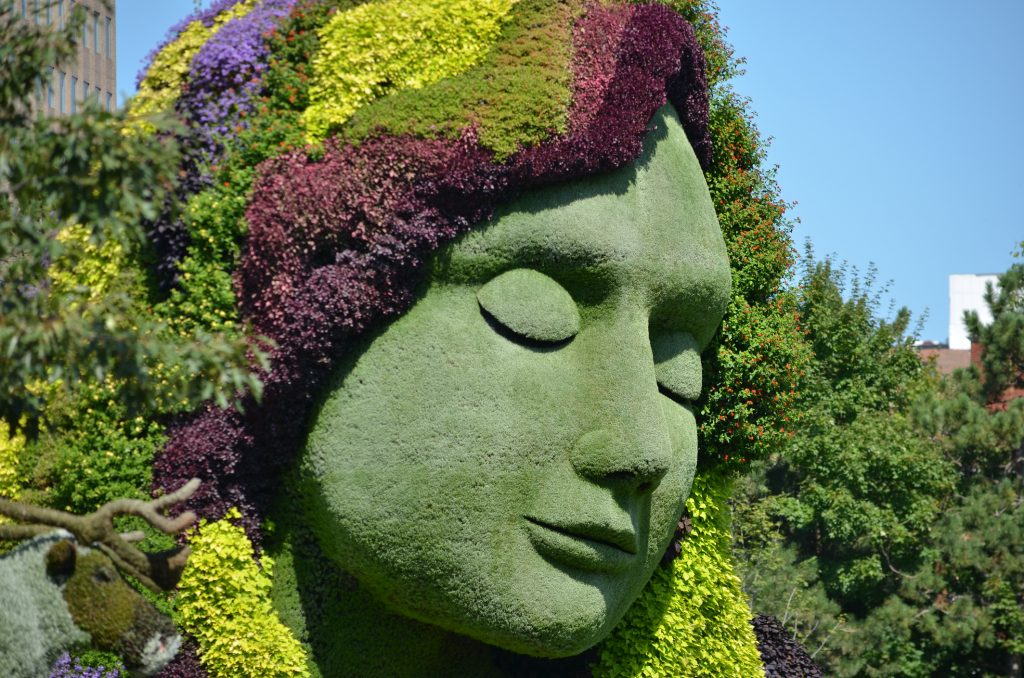 Topiary of the Month Collection